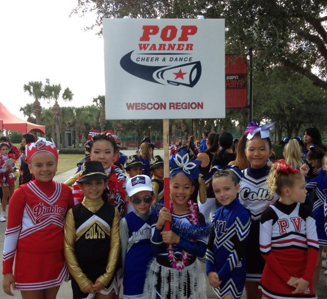 an overview of cheerleading an unappreciated sport Since this chapter is only an overview,  turned off and unappreciated,  and sport within a century of cook's discovery of these islands,.
